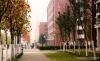 安徽新华美丽的校园风景