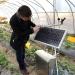 田野正在自己的草莓种植基地内查看棚内环境数据