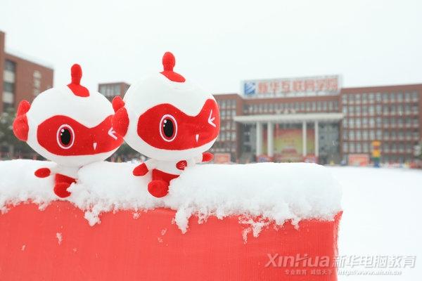 校园雪景丨你好,2020年的第一场雪